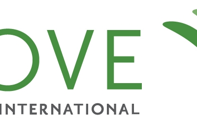 The Grove International Consultants